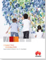 Annual Report 2011 fs